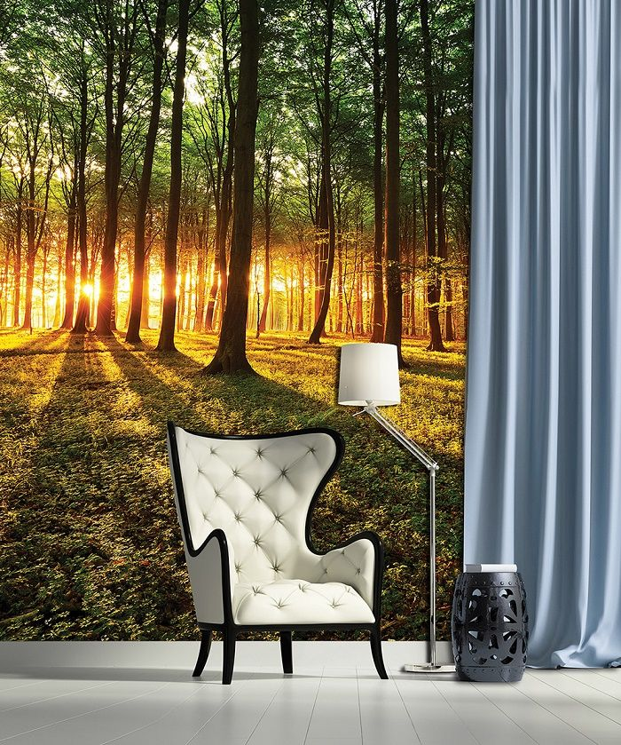 forest scene sunrice wall murals for wall homewallmurals forest murals amp forest scene wallpaper