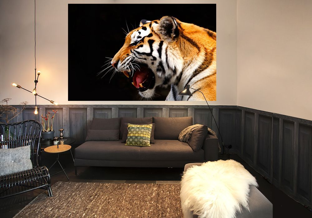 home walls wallpapers tiger