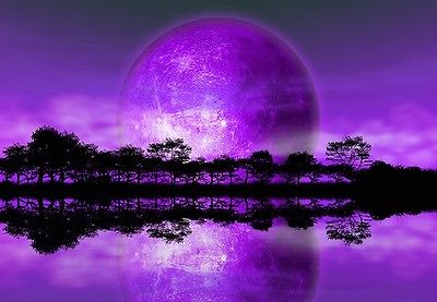 Wallpaper Mural Alien Planet Purple Art