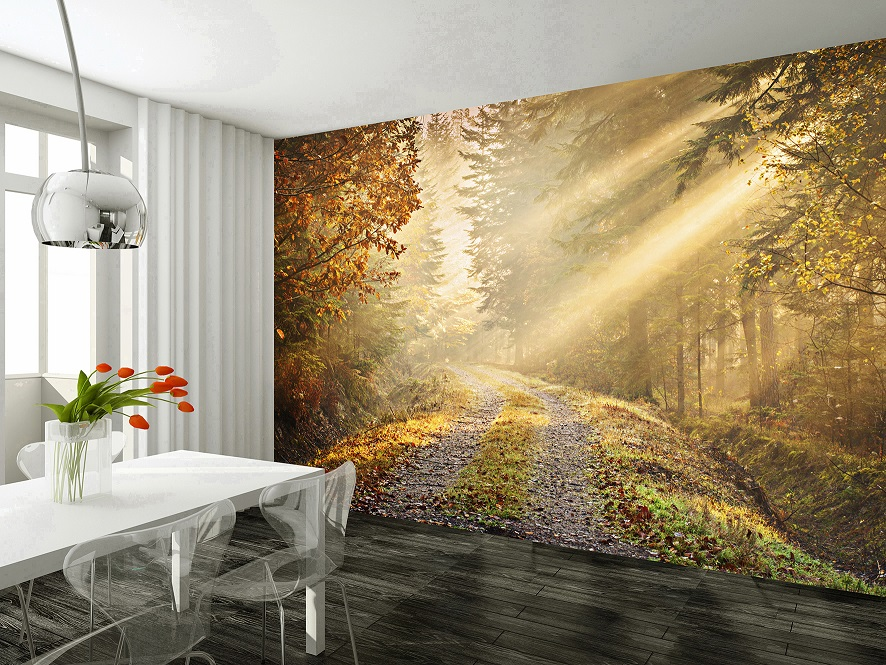 Autumn - forest patch wall mural wallpaper