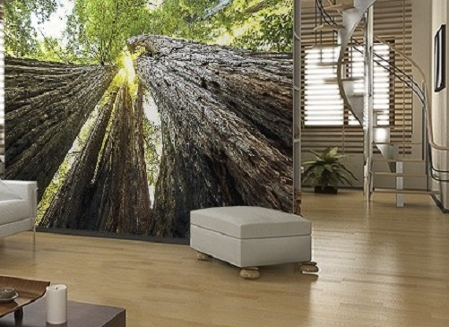 Green forest scene wall murals | Homewallmurals.co.uk
