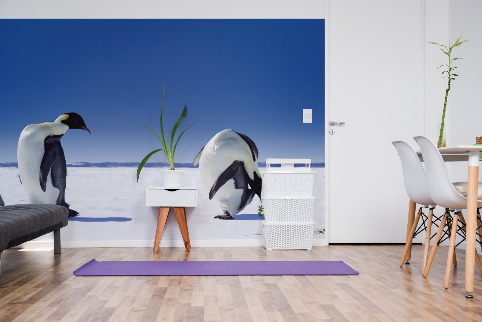 Penguins arctic animals wallpaper murals