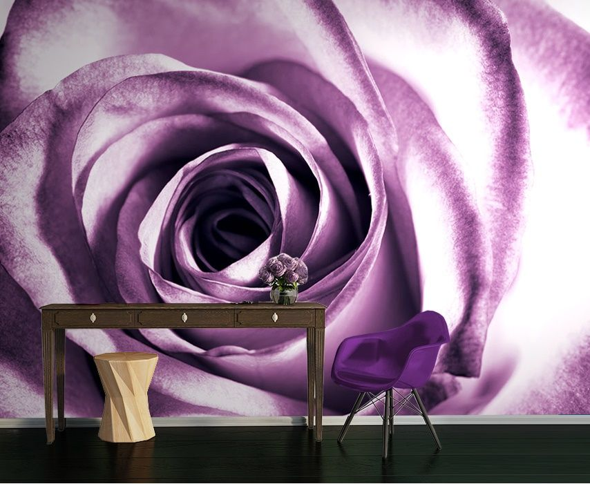 Purple Rose Flower Wallpaper Murals By Homewallmurals