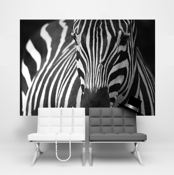 Home walls wallpapers Zebra Homewallmuralscouk